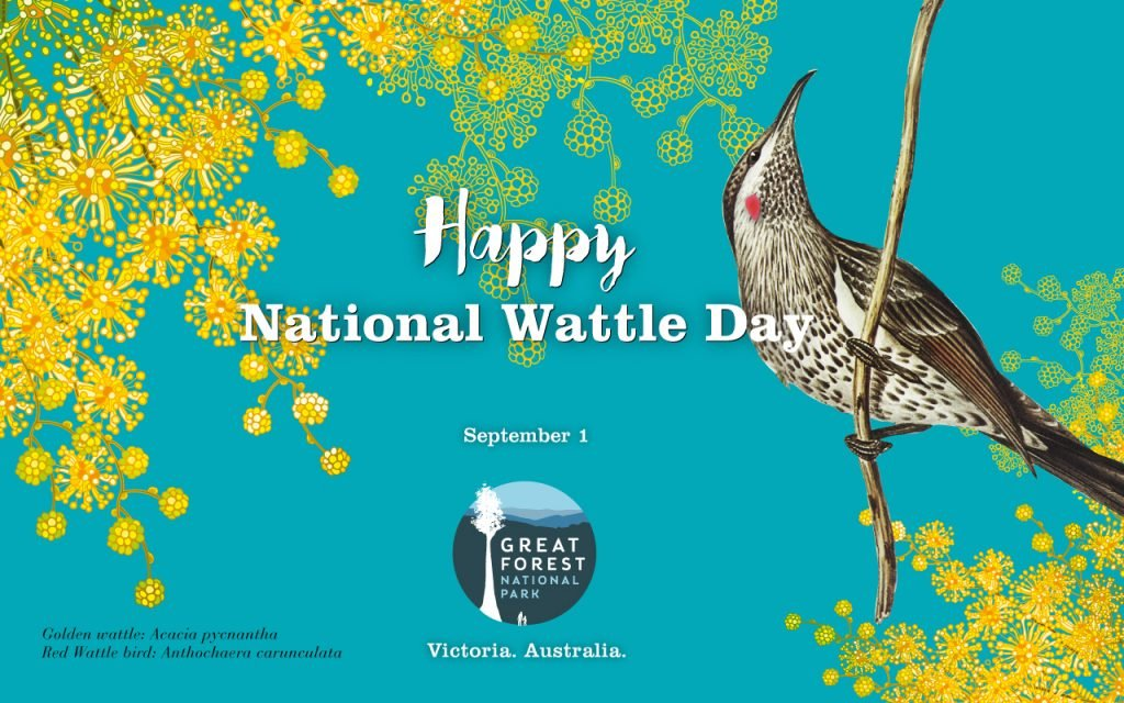 National-Wattle-Day-Sep20-v1